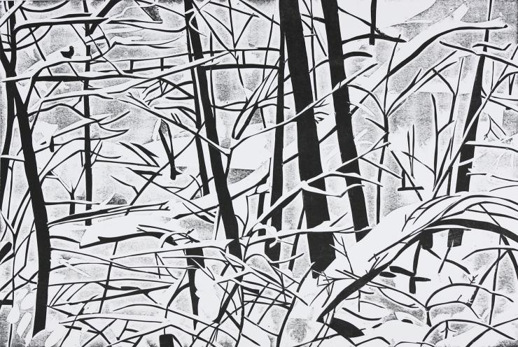 Talvi Tourujoella1 56x82,5cm pahvikaiverruus